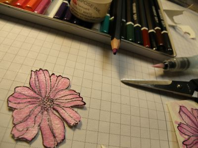 Began with this flower