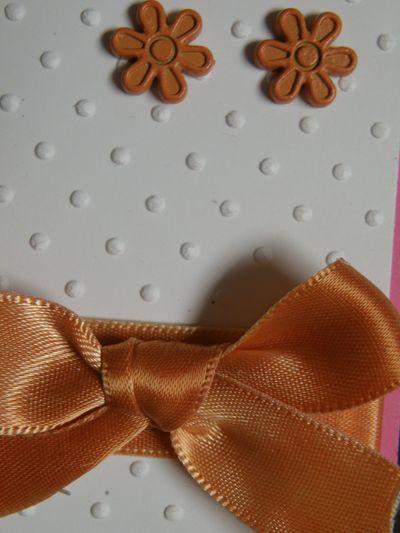 Up close ribbon and brads