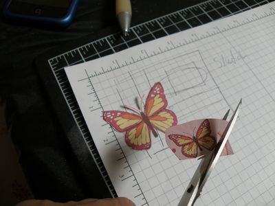 Began with butterflies from DSP