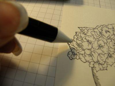 Crayon white