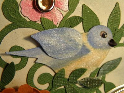 Ou the birdie upclose