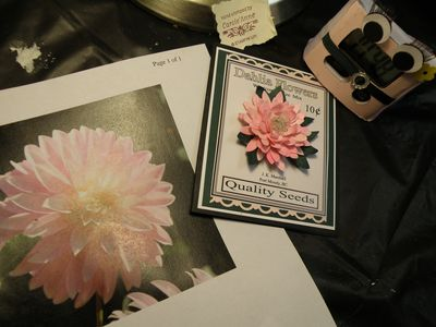 Seed packet card 019