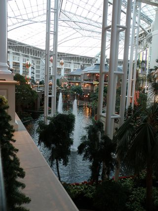 C this is the Gaylord it's beautiful