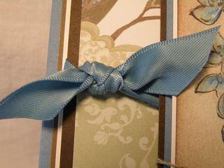 I like the ribbon
